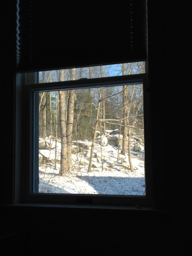 A Winter Vista